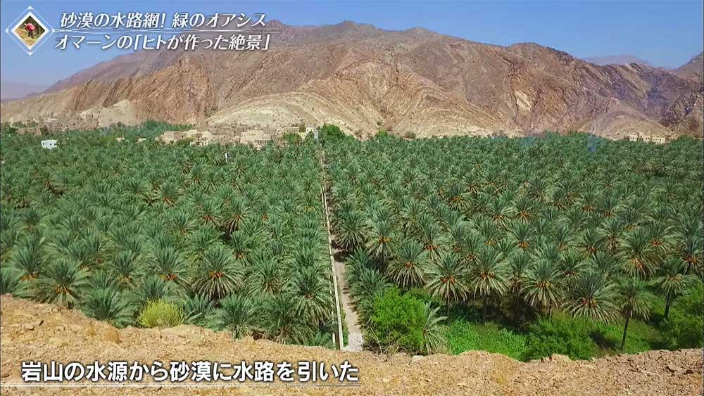 砂漠へ水を引くための水路