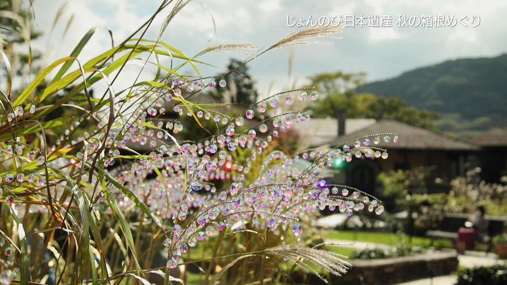 庭園にあるガラスのオブジェ